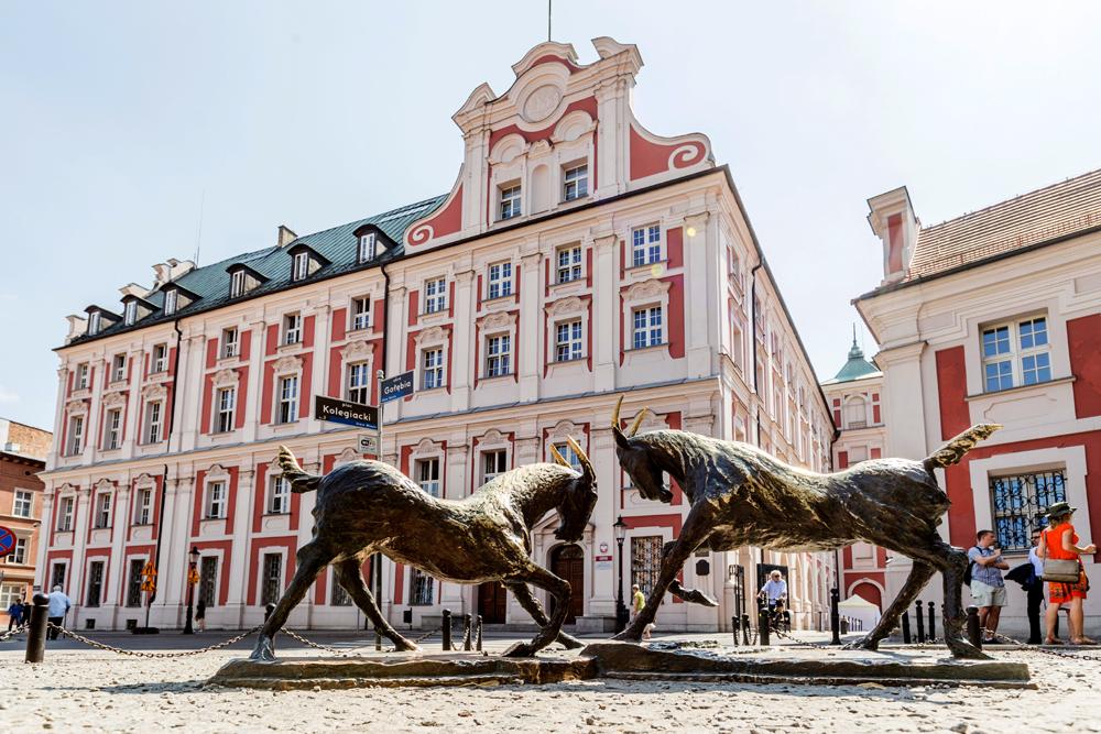 Plac Kolegiacki w Poznaniu