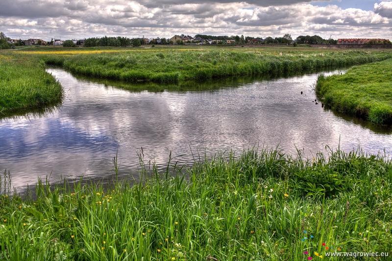 Skrzyżowanie rzek Nielby i Wełny
